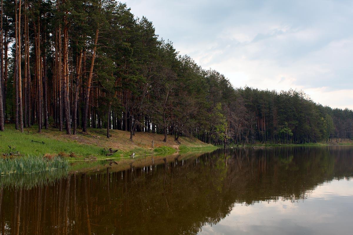 озера для рыбалки брянской области