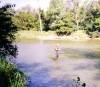 Рыбалка в Rockford(e)