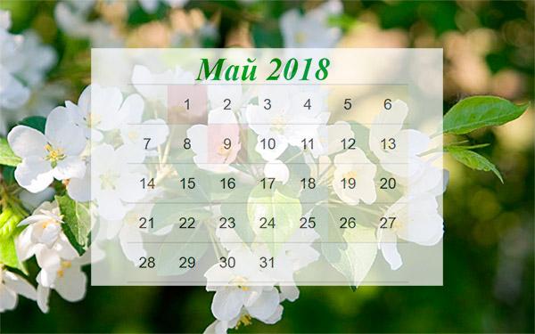 Как отдыхаем в выходные в мае