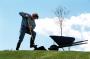 Как правильно сажать деревья и кустарники?