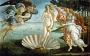Венера пригласила… Современная эротическая поэзия