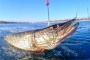 Рыбалка поздней осенью, или, Правильно выбираем снасти и экипировку