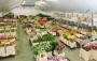 Как можно купить цветы оптом с доставкой и меньшими затратами в регионах России