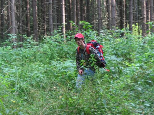 Способы ориентирования в лесу