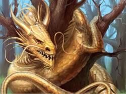 Что нас ждет в 2012 году? Что ожидать нам от Черного (Водного) Дракона?