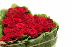 Украшение помещений цветами