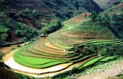 Что посмотреть туристу во Вьетнаме. Туры во Вьетнам