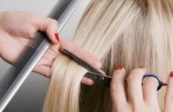 Курсы парикмахеров – начало собственной карьеры
