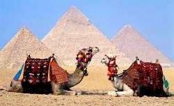 Вылеты из Перми в Египет