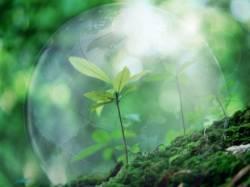 Здоровье окружающей среды в ваших руках