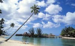 В отпуск за экзотикой: Вьетнам и Шри-Ланка