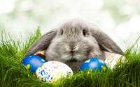 Поздравляем со Светлым Христовым Воскресением — Пасхой Господней!