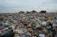 Экологи бьют тревогу: в Клинцах обнаружена незаконная свалка