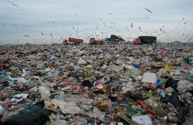 Экологи: мусорный полигон вбрянских Клинцах работает нелегально